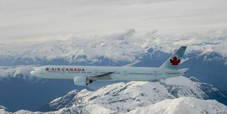 Air Canada Loses Dog, Mocks Shutdown - Business Insider | Animal Abuse | Scoop.it