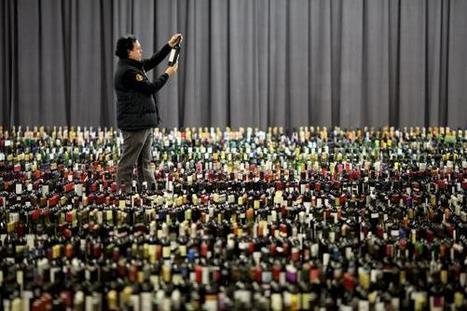 Italian Police Uncover Massive Wine Fraud, Seize 200,000 Fake Bottles... | Quirky wine & spirit articles from VINGLISH | Scoop.it