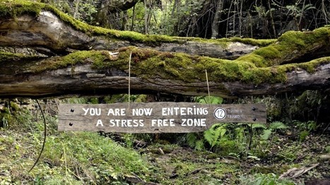 Una iniciativa anònima dóna a conèixer racons «lliures d'estrès» al Pirineu | #territori | Scoop.it
