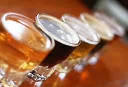 A Beer Novice? Teach Your Friends Everything About Beer!   Craft Beer And Sustainability   Scoop.it