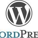 Funciones y buenas prácticas a la hora de crear un child theme en Wordpress | Libro de Apuntes | CMS Economiza tu tiempo en la creacion de web | Scoop.it