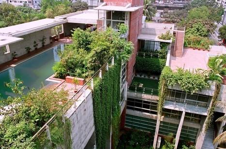 La permaculture au coeur de la biodiversité - consoGlobe (Inscription) | Biomimétisme & Biomimicry | Scoop.it