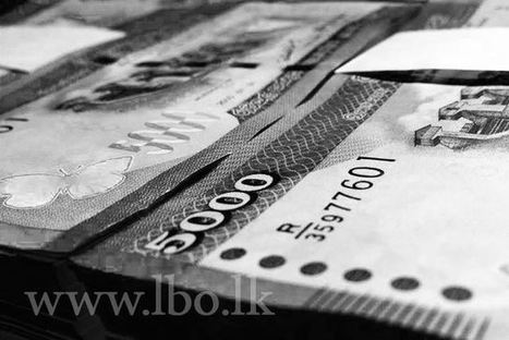 Sri Lanka's private sector credit to grow further: Monetary Policy Review | How to register a company worldwide | Scoop.it