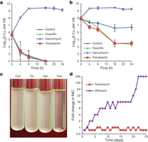 A new antibiotic kills pathogens without detectable resistance   Horizontal gene transfert and antibiotic resistance   Scoop.it