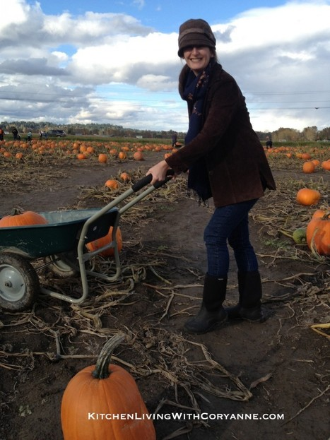 Getting the most out of harvest pumpkins   Annie Haven   Haven Brand   Scoop.it