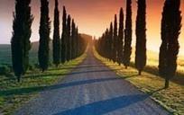 Italiaans onroerend goed: de markt in 2015 - bouwenwonen.net | Italian Properties - Italiaans Onroerend Goed | Scoop.it