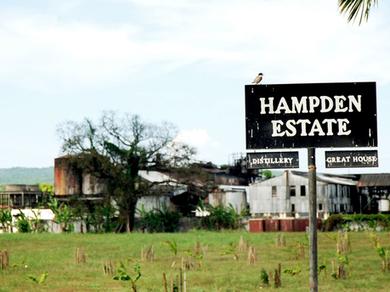Jamaicans invest big in sugar - Jamaica Gleaner | Energy in the Caribbean | Scoop.it