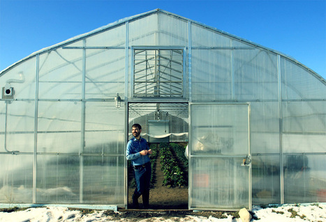 Adventures in Winter Farming | Found Michigan | Local Food Systems | Scoop.it