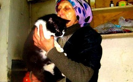 Remarkable Rescue of Elderly Woman Living at Dump With Dogs & Cats | Compassion in Action | Scoop.it
