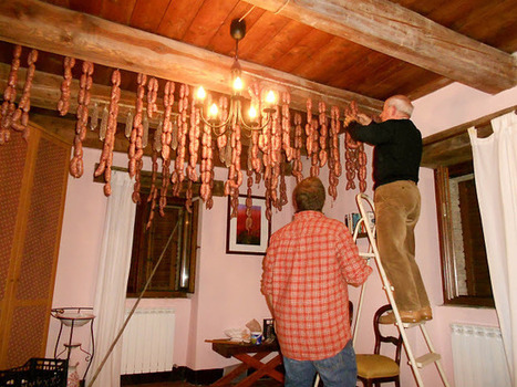 Home Cured Meat: 100+lbs of Sausages Hanging from the Rafters   Le Marche and Food   Scoop.it