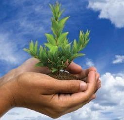 Impatto ambientale: gli italiani si impegnano per la riduzione   Offset your carbon footprint   Scoop.it