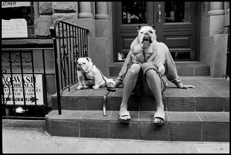 14 Lessons Elliott Erwitt Has Taught Me About Street Photography | Eric Kim | Photojournalism & Photography | Scoop.it