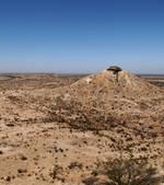 La déforestation transforme peu à peu la Somalie en désert | Les déserts dans le monde | Scoop.it