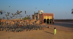 The City of Sufis; Multan, Is a Place Every Person in This World Need to Visit   Services   Scoop.it