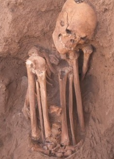 Taphonomic Analysis of Neolithic Seated Burials | Bones Don't Lie | Neolithic Age | Scoop.it