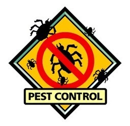 How to Manage a Pest Control Business | Health | Scoop.it