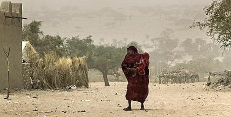 Prévention des crises alimentaires au Sahel et en Afrique de l'Ouest Il y aura plus de personnes en insécurité alimentaire en 2014 | SécuriteAlimentaireSahel | Scoop.it
