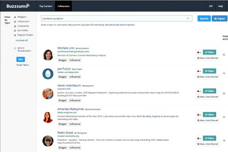 Find Top Trending Content and Key Opinion Leaders In Any Niche with BuzzSumo | SocialMediaDesign | Scoop.it