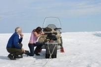 Facebook Photo Shows Kennedy Girl Shooting Baby Seals //Who?? | Littlebytesnews Current Events | Scoop.it