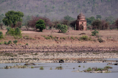 Ken-Betwa River Link-up Approved, Tiger Reserve to Be Submerged | Endangered species | Scoop.it