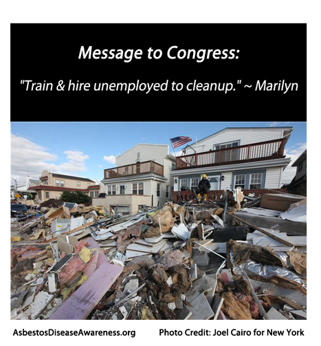 "ADAO: Hurricane Sandy 6 Word Quote for Congress: ""Train & hire unemployed to cleanup."" ~ Marilyn 