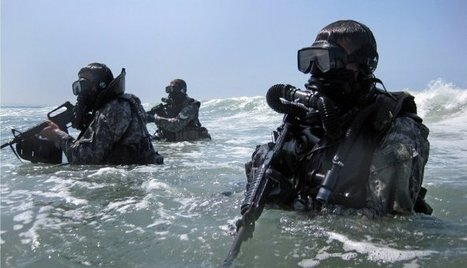 Resilient Leadership Navy Seal Style | Complex systems and projects | Scoop.it