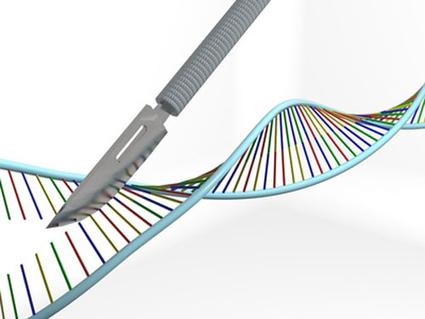 Human CRISPR Trials Could Become Sputnik 2.0 | GEN Genetic Engineering & Biotechnology News - Biotech from Bench to Business | GEN | Long Life | Scoop.it