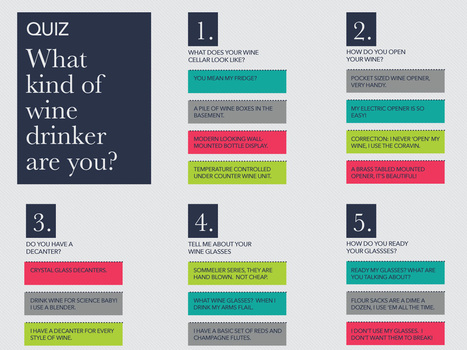 QUIZ: Types of Wine Drinkers (Infographic)   Wine Folly   Wine n Beer Fun & Facts   Scoop.it