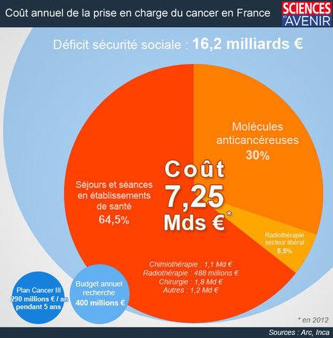 INFOGRAPHIE. Combien coûte le cancer en France ? | Infographie Cancer | Scoop.it