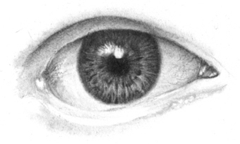 Drawing the Human Eye » OnlyPencil Drawing Tutorials | Drawing | Scoop.it