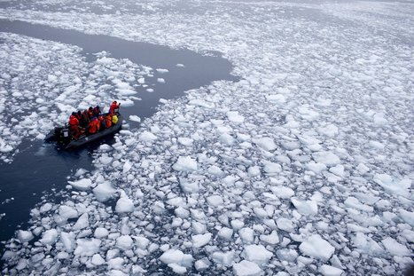 #FF #Antarctic ice shelves #melting 70% faster, study shows #climate #extinction | Messenger for mother Earth | Scoop.it