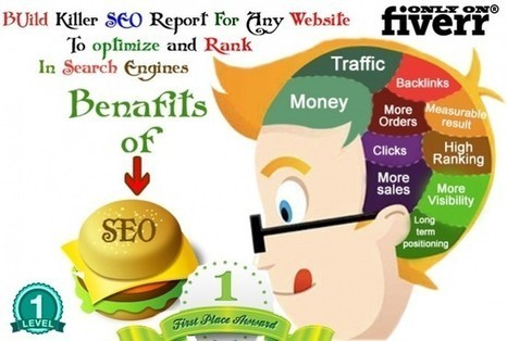 charlesservices : I will do Help full SEO Report Of 40 Pages For Ranking for $5 on | SEO | Scoop.it