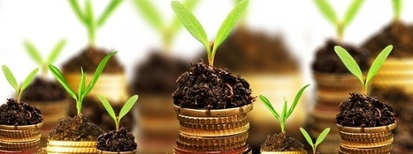 Crowdfunding, Business angels, quel financement choisir? | Funding for innovative SMEs | Scoop.it