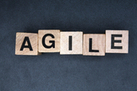 Is Agile Scrum Methodology Right for Your Business? - BusinessNewsDaily | Capital Thinking! Business Analysis in the NCR | Scoop.it