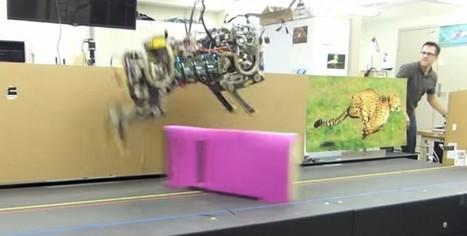 El nuevo robot del MIT no solo corre, también salta obstáculos | tecno4 | Scoop.it