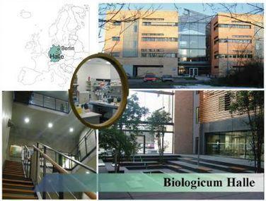 COST Action SUSTAIN - TALEN & CRISPR Training School / March 2014 Halle | Effectors and Plant Immunity | Scoop.it