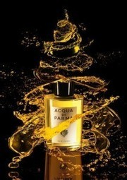 Our Tips For Choosing Perfect Christmas Fragrance - Our Tips For | Perfume Online | Scoop.it