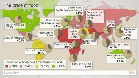 The price of food | Agricultural Biodiversity | Scoop.it