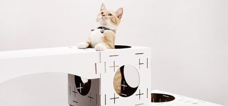 Blocks : les aires de jeu façon paper-toy pour chat | Fashion Pets | Scoop.it