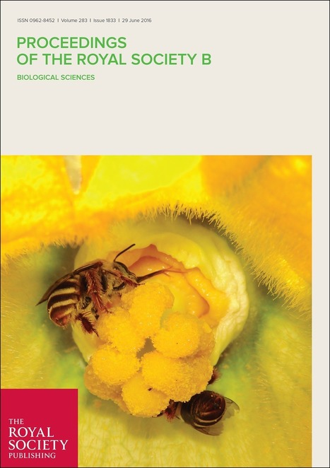 A possible role of DNA methylation in functional divergence of a fast evolving duplicate gene encoding odorant binding protein 11 in the honeybee | Odorant Binding Proteins | Scoop.it