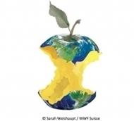 Earth Overshoot Day : A partir d'aujourd'hui, l'humanité vit à crédit / Actualités / MesCoursesPourLaPlanète.com   EDD-Robert Schuman   Scoop.it