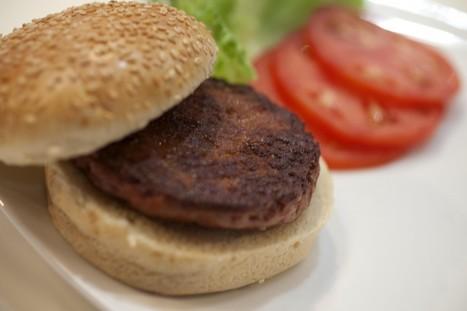 Has the kosher cheeseburger arrived?   Jewish Telegraphic Agency   Jewish Education Around the World   Scoop.it