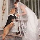 12 Unbelievable People Who Married Animals | Strange days indeed... | Scoop.it