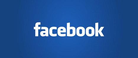 Un Facebook payant pour les professionnels lancé le mois prochain | Geeks | Scoop.it