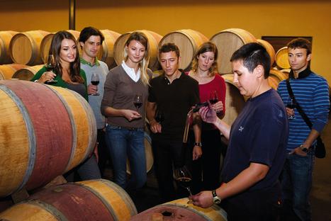 Oenotourisme : le bonheur est dans la vigne   Wine, Life & Geek - entre Bordeaux & Toulouse   Scoop.it