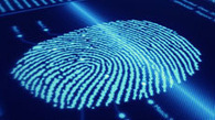 Finextra: French shoppers trial biometric payments   Financial   Scoop.it