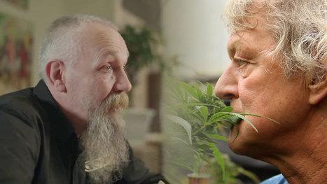 Markante Friezen op Mediwietsite: Doede de Jong & Rinus Beintema - RollingStoned.nl | Medicinale-cannabis | Scoop.it