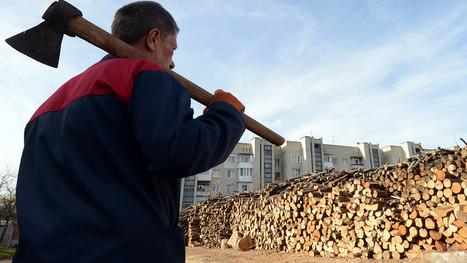 New Lumber Liquidators investors get taken behind the woodshed   Business News & Finance   Scoop.it