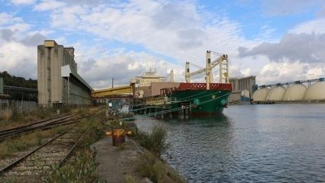 Accords commerciaux bilatéraux 3 syndicats français, américains et africains demandent l'exception agricole | Questions de développement ... | Scoop.it