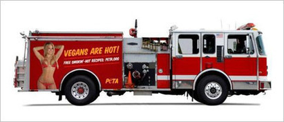PETA Ads With 'Hot' Women Could Run on Baltimore Fire Trucks | Psychology of Consumer Behaviour | Scoop.it